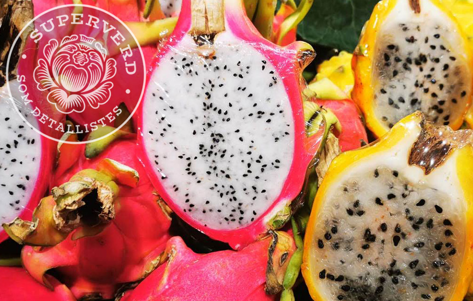 web mini pitahaya
