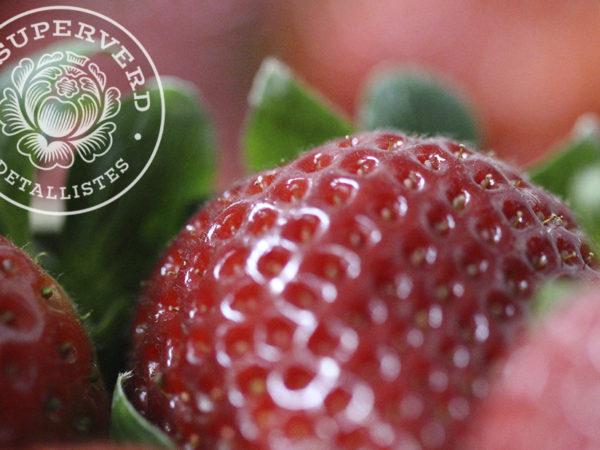 menú para acceder a las fresas de huelva