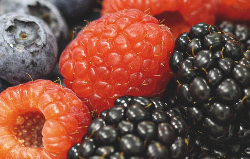 web mini menu fruits del bosc Superverd