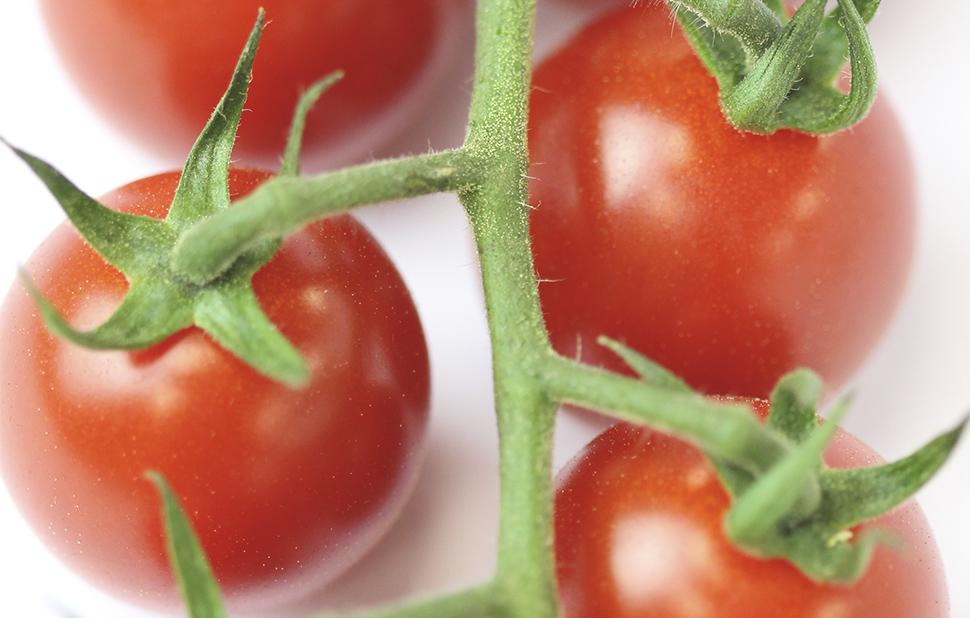 menu per accedir a tomquet cherry superverd